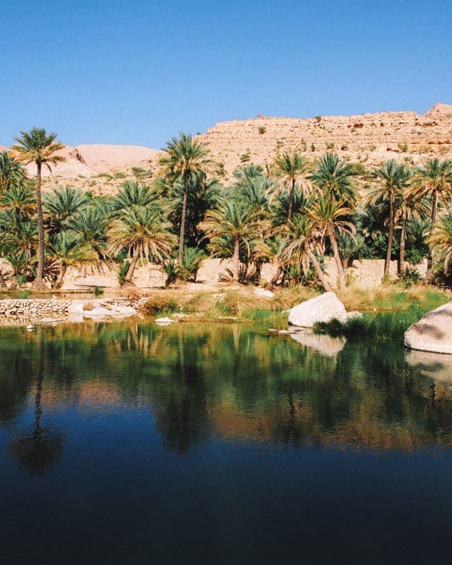 wadi Bani Khalid reflet palmiers oman