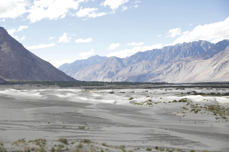 Ladakh nubra vallée dunes de sable blanc - Photo paysage