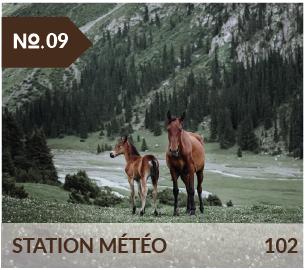 vallée de chong kyzyl suu jusqu'à station météo, source d'eau chaude et randonnée